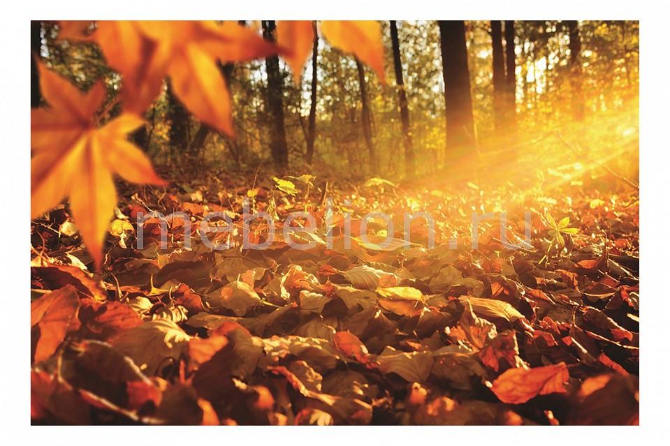 Панно Ekoramka (60х40 см) Желтые листья 131118845 цена