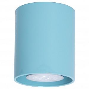 Настенно-потолочные светильник  OEM (Россия)