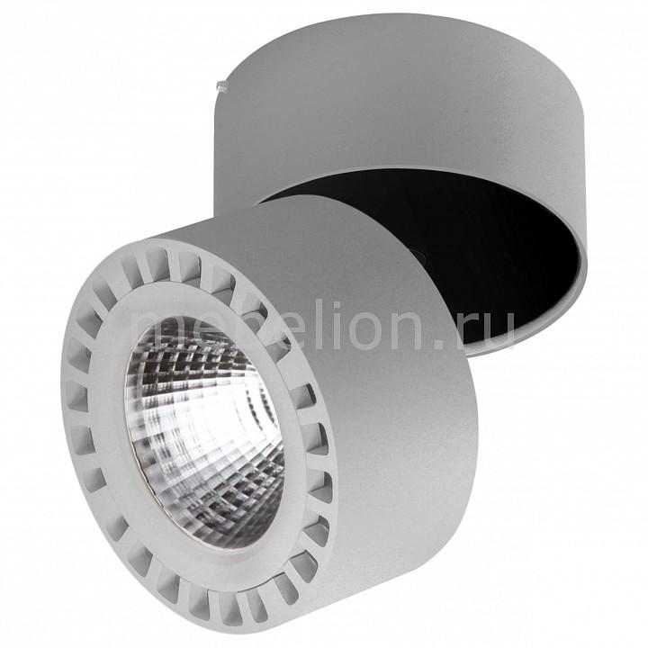 Купить Светильник на штанге Forte 381394, Lightstar