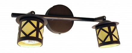 Спот две лампы Гессен CL536521