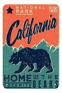 Панно (20x30 см) California TM-113-147