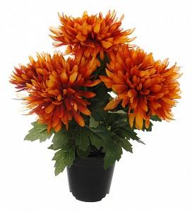 Растение в горшке (32 см) 58005700
