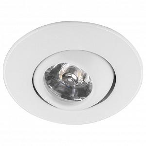 Точечный потолочный светильник LN006 FE_29581