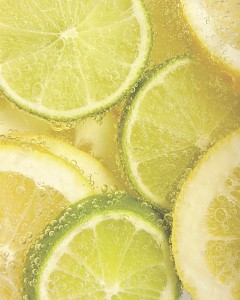 Картина (40х50 см) Лимон и лайм SE-102-138