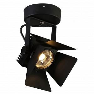 Настенно-потолочный прожектор Projector 1770-1U