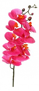 Цветок (90 см) Орхидея 23-280