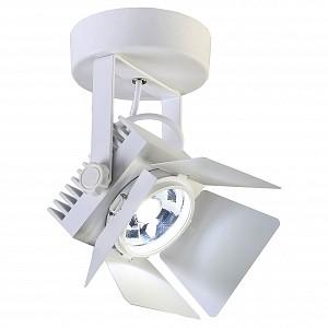 Настенно-потолочный прожектор Projector 1771-1U