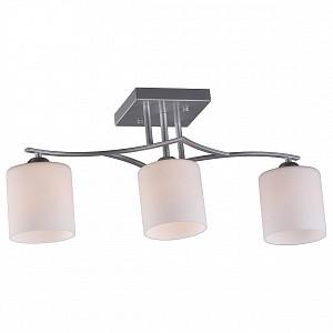 Потолочный светильник на штанге Pisticci OM_OML-55307-03