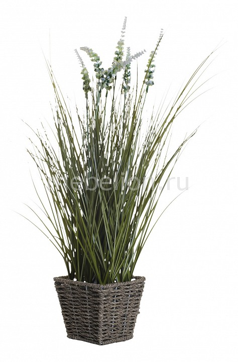 Растение в горшке Garda Decor Растения в горшке (55 см) Вейник остроконечный 8J-11AK0023 подсвечник garda decor 32 см хрустальный x131050