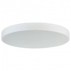 Накладной светильник C111052 C111052/1 D1000
