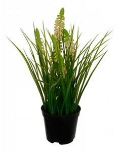 Растение в горшке (28 см) Лаванда 58021700