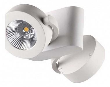 Спот потолочный LED Pumavi OD_3493_20CL