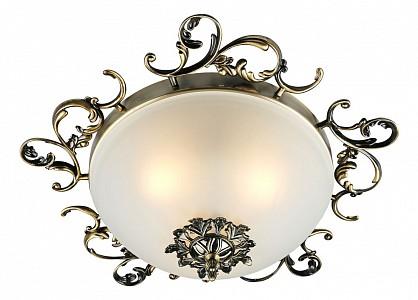 Накладной светильник Palermo OML-76407-03