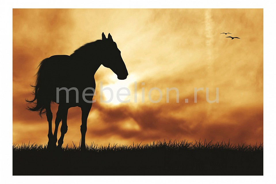 Панно Ekoramka (60х40 см) Лошадь 118687838