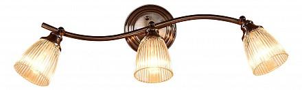Спот с 3 лампами Виндзор CL539531