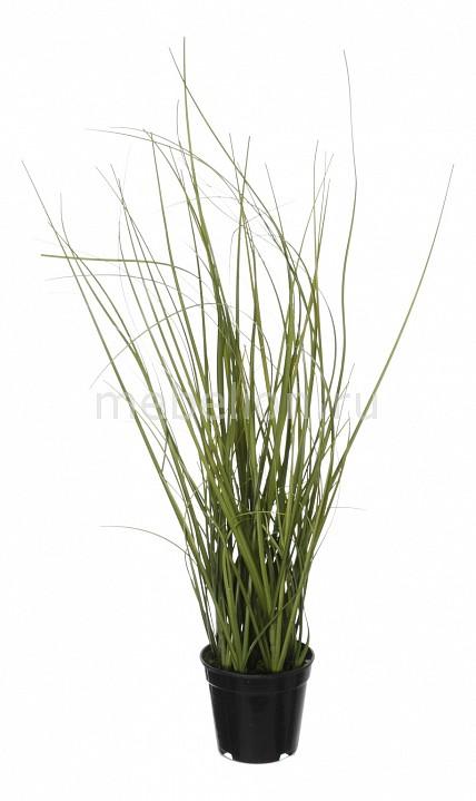 Растение в горшке Home-Religion (37 см) Трава 58005400 растение в горшке home religion 37 см трава 58005400