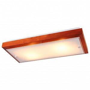 Накладной светильник Полина 199-21-22