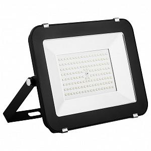 Настенный прожектор SFL90 55069
