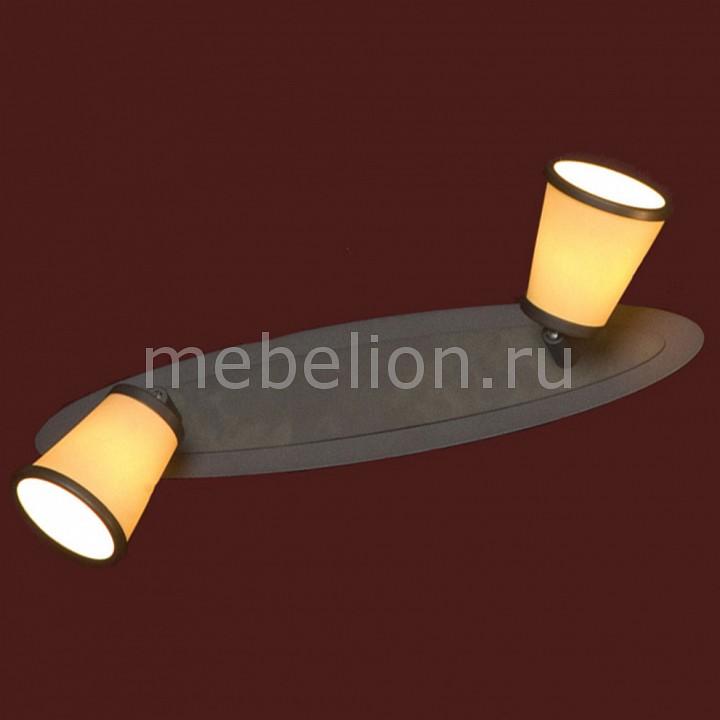 Светильник Lussole LSL-2301-02 от Mebelion.ru
