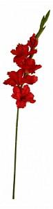 Цветок (77 см) Гладиолус 58017000