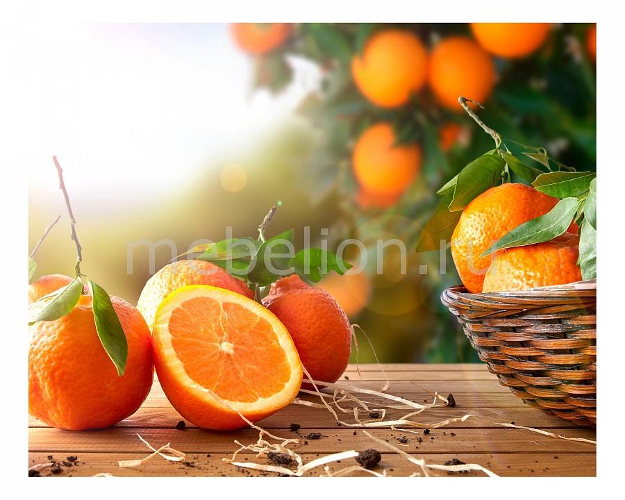 Панно Ekoramka (50х40 см) Апельсины 1744021К5040