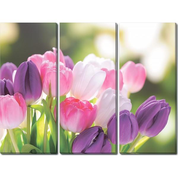 Набор из 3 картин (90х70 см) Букет тюльпанов HE-107-193 фото