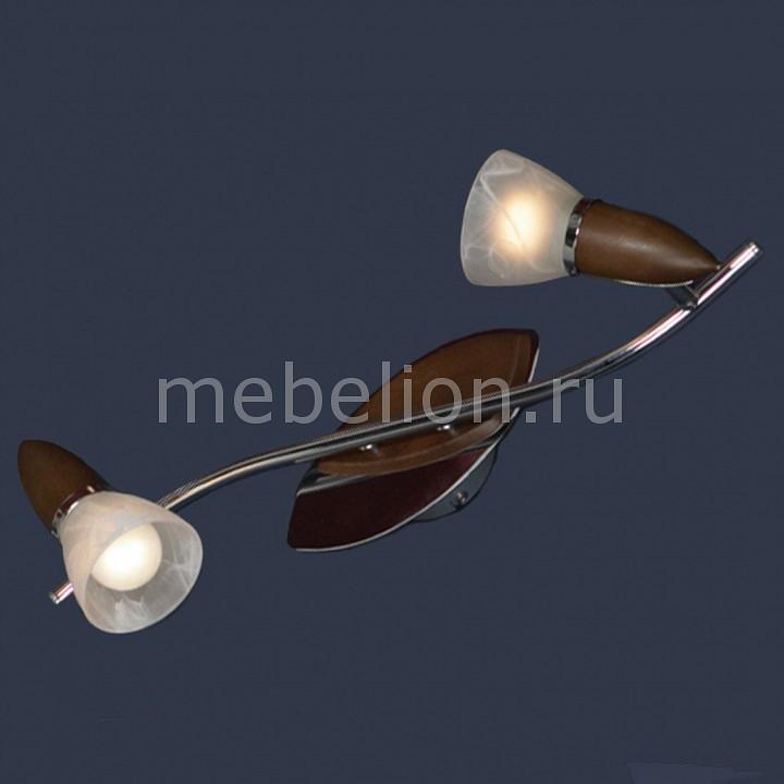 Настенный светильник Lussole LSQ-6401-02 от Mebelion.ru