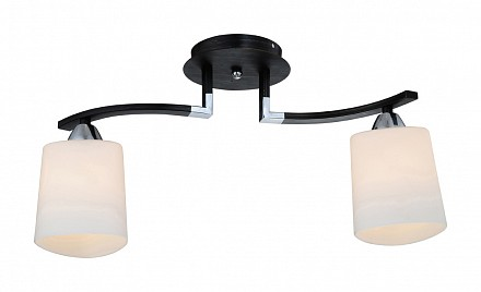 Потолочный светильник на штанге 860 ID_860_2PF-dark