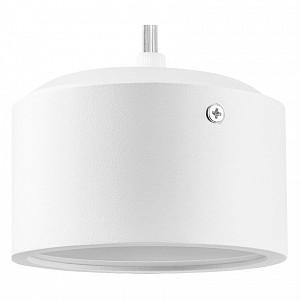 Подвесной светильник Zolla ZP3916