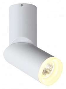 Светильник на штанге Tortelle ST107.502.10