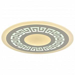 Накладной потолочный светильник 220v Ledolution FV_2273-8C