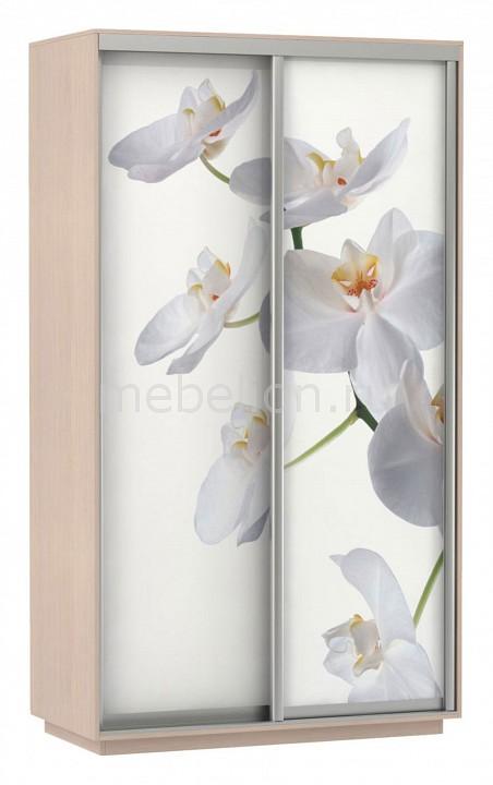 Шкаф-купе Экспресс Фото 2 Белая орхидея