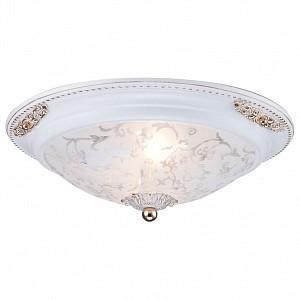 Потолочный светильник 2 лампы Diametrik MY_C907-CL-02-W