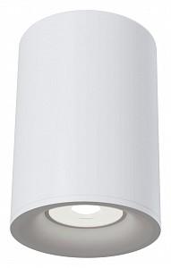 Накладной светильник Alfa C012CL-01W