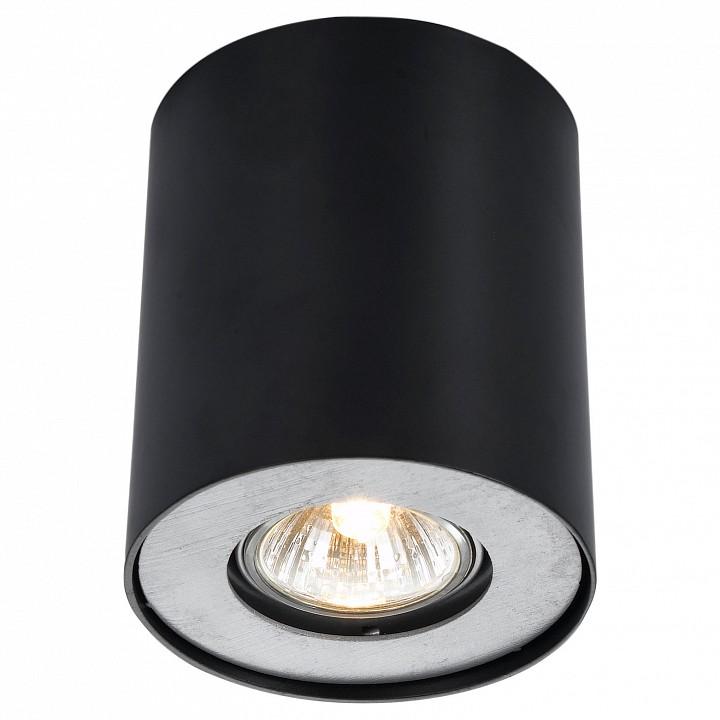 Купить Накладной светильник Falcon A5633PL-1BK, Arte Lamp