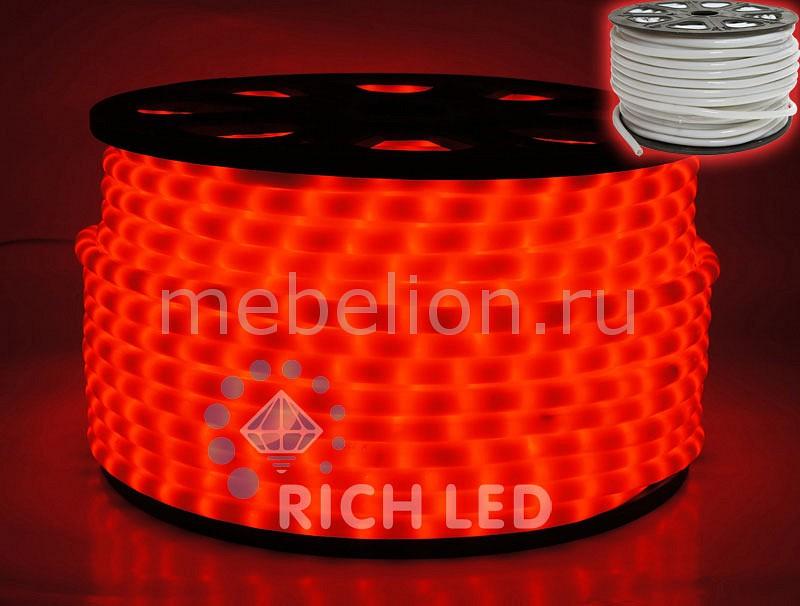 Шнур световой RL-DL-2WHM-100-240-R