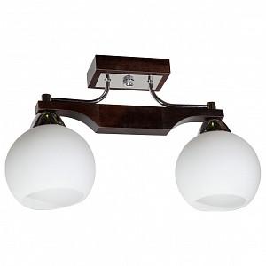 Светильник на штанге Римма 192-41-22P