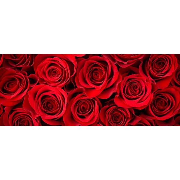 Картина (50х20 см) Алые розы HE-101-540 фото