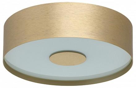 Потолочный светодиодный светильник Энигма 1 MW_688010501