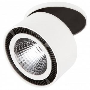 Спот 1 лампа Forte Inca LED LS_213806