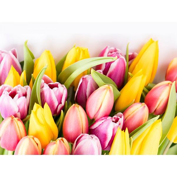 Картина (40х30 см) Большой букет тюльпанов HE-101-700 фото