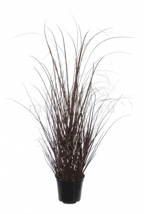 Растение в горшке Home-Religion (60 см) Трава 58005600 растение в горшке home religion 37 см трава 58005400