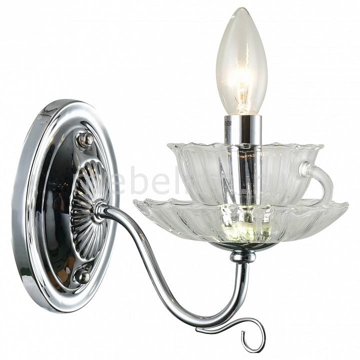 Купить Бра 1704 A1704AP-1CC, Arte Lamp, Италия