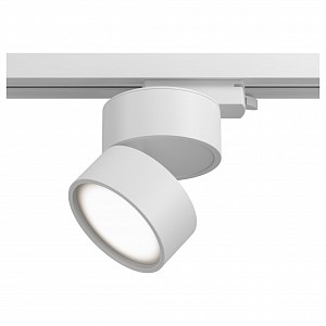 Накладной светильник Track lamps 2 TR007-1-12W3K-W