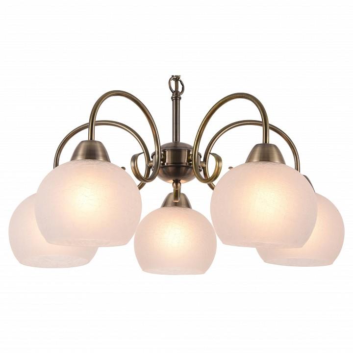 Купить Подвесная люстра 9317 A9317LM-5AB, Arte Lamp