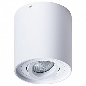 Светильник потолочный Falcon Arte Lamp (Италия)