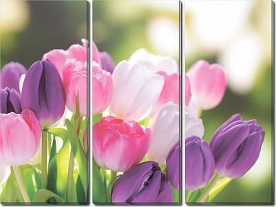 Набор из 3 картин (90х70 см) Букет тюльпанов HE-107-193