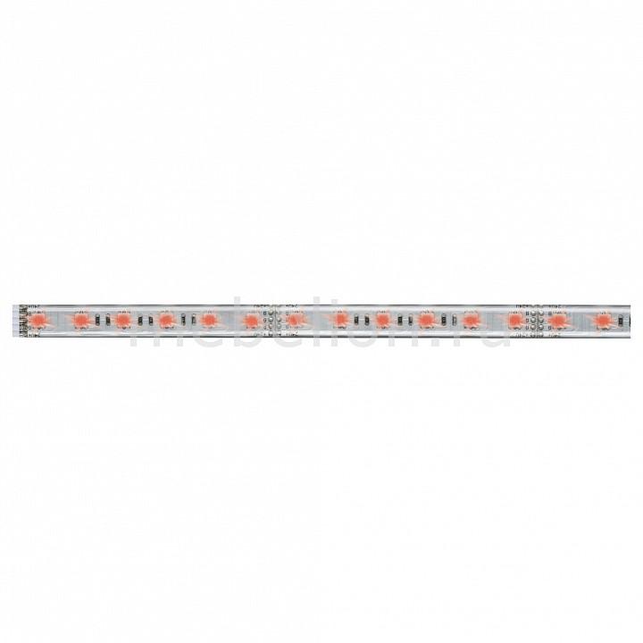 Купить Лента светодиодная [50 см] MaxLED 70658, Paulmann, серый, полимер