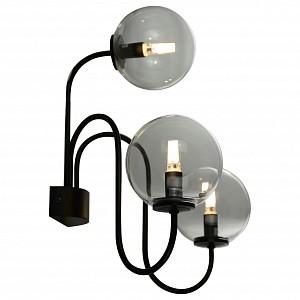 Бра 3 лампы Fiamo SL423.401.03