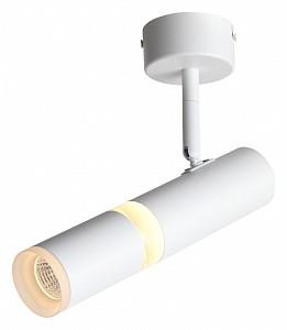Светильник на штанге Escopio ST106.502.08